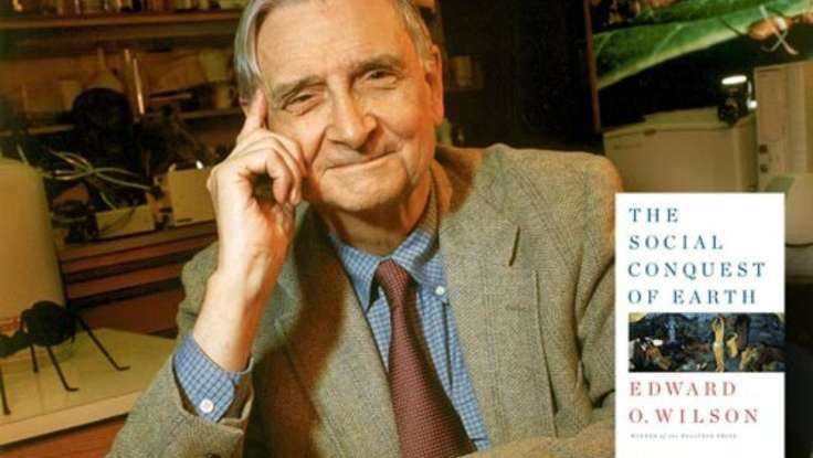 In a Massive New Book, E.O. Wilson Says Groups Drive Human Evolution